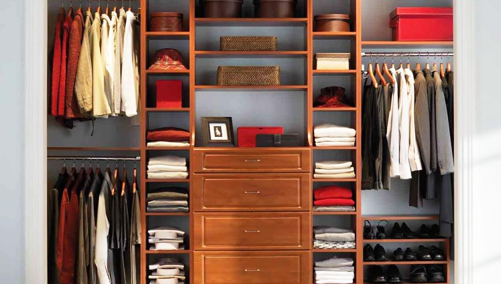 Closet Organization Systems IKEA Storage Design Ideas